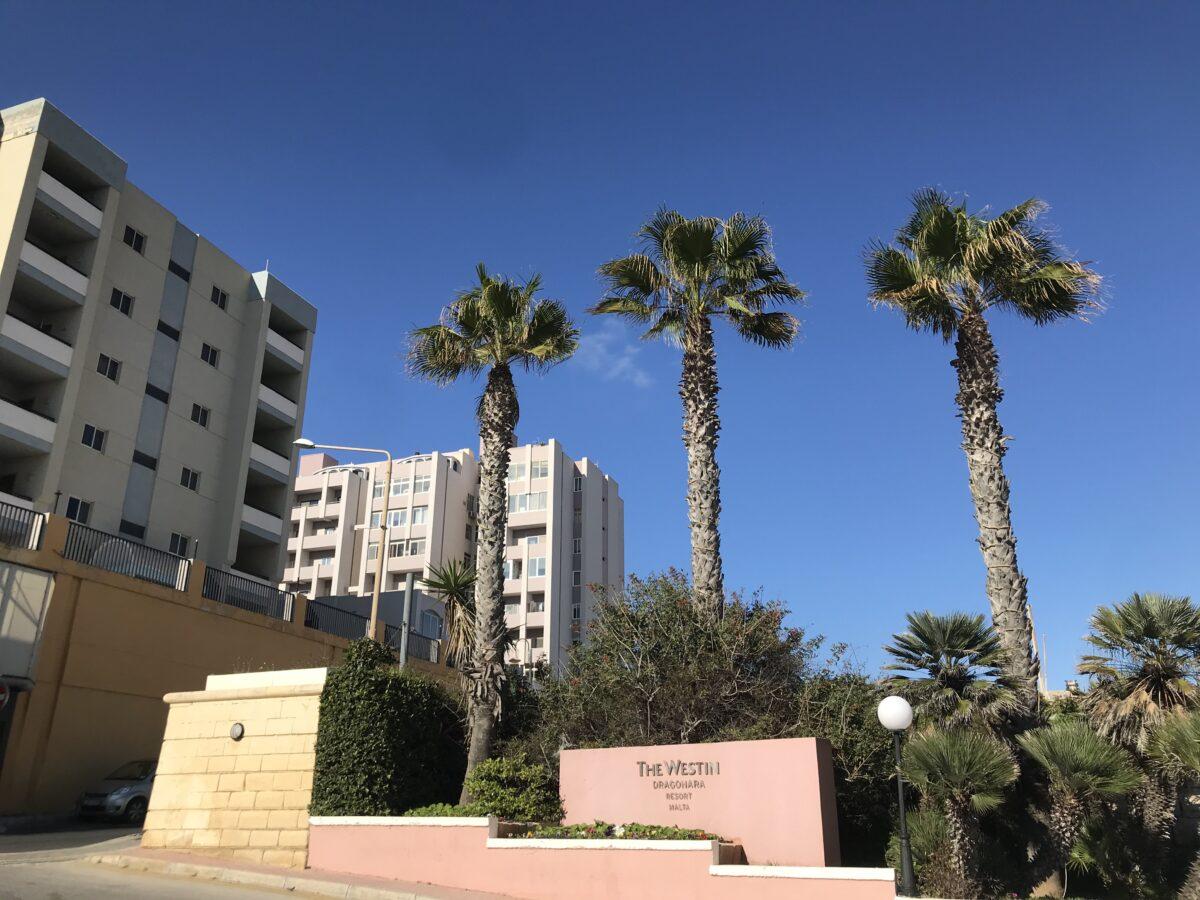 Praca na Malcie